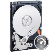 WD® Scorpio® Black WD1600BEKT 160GB SATA/300 3 Gbps Internal Hard Drive, Black/Silver