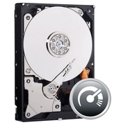 WD® AV-GP WD5000AUDX 500GB SATA/600 6 Gbps Internal Hard Drive, Black/Silver