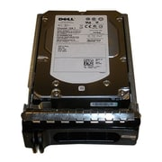 Dell™ FM501 450GB SAS 3 Gbps Internal Refurbished Hard Drive