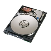 HGST Travelstar Z7K320 HTS723232A7A364 320GB SATA 3 Gbps Internal Hard Drive