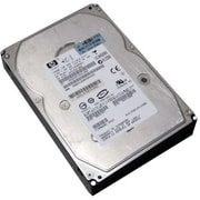 HP® 417192-004 300GB SAS 6 Gbps Hot-Plug Internal Hard Drive, Black/Silver