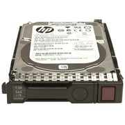 HP® 653954-001 1TB SAS 6 Gbps Hot-Plug Internal Hard Drive, Black/Silver