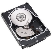 Seagate® Cheetah 15K.5 ST3146855LW 147GB SCSI Internal Hard Drive, Black/Silver