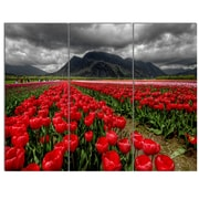 DesignArt 'Rows of Bright Ruby Red Tulips' 3 Piece Photographic Print on Canvas Set
