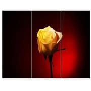 DesignArt 'Beautiful Yellow Colored Rose' 3 Piece Photographic Print on Canvas Set
