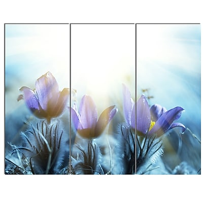 DesignArt 'Blooming Blue Spring Flowers' 3 Piece Photographic Print on Canvas Set WYF078279880997