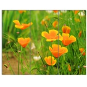 DesignArt 'Bright Yellow Poppy Flowers' 3 Piece Photographic Print on Canvas Set
