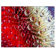 DesignArt 'Colorful Red Flower in Raindrops' 3 Piece Graphic Art on Canvas Set