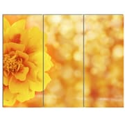 DesignArt 'Beautiful Floral Yellow Background' 3 Piece Photographic Print on Canvas Set