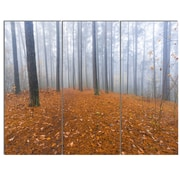 DesignArt 'Foggy Forest and Fallen Leaves' 3 Piece Photographic Print on Canvas Set