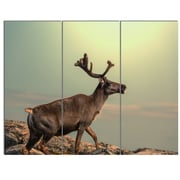 DesignArt 'Reindeer on Top of the Mountain' 3 Piece Photographic Print on Canvas Set