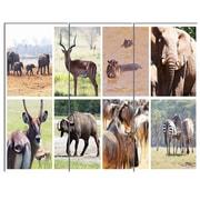 DesignArt 'Rich African Wildlife Collage' 3 Piece Photographic Print on Canvas Set