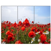 DesignArt 'Red Poppies Under Bright Blue Sky' 3 Piece Photographic Print on Canvas Set