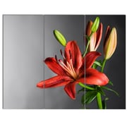 DesignArt 'Cute Red Lily Flower Over Black' 3 Piece Photographic Print on Canvas Set