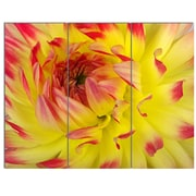 DesignArt 'Smooth Yellow Red Flower Petals' 3 Piece Photographic Print on Canvas Set