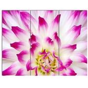 DesignArt 'Smooth White Rose Floral Petals' 3 Piece Photographic Print on Canvas Set