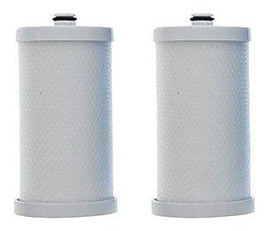 Crucial Frigidaire Refrigerator/Icemaker Water Purifier Filter (Set of 2) WYF078279707574