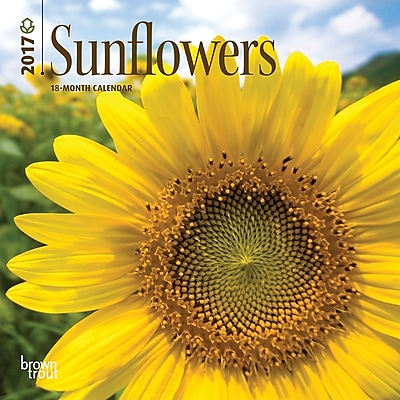 2017 Sunflowers 7x7 Calendar (9781465092403) 2472578