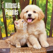 2017 Kittens & Puppies 12x12 Calendar (9781465092595)