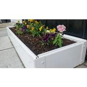 CookProducts Handy Bed Rectangular Raised Garden Bed; 6'' H x 12'' W x 48'' D