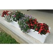 CookProducts Handy Bed Rectangular Raised Garden Bed; 6'' H x 8.5'' W x 48'' D