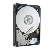 "IBM® 5433 600GB SAS 6 Gbps 2 1/2"" Internal Hard Drive"