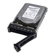"Dell™ 400-ALRR 2TB SAS 3 1/2"" Internal Hard Drive"