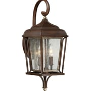 Laurel Foundry Modern Farmhouse Evelin 2 Light Outdoor Wall Lantern