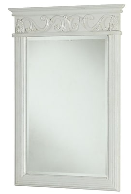 Elegant Lighting Danville Rectangle Vanity Mirror; Brown Staples