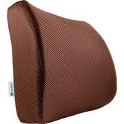 PharMeDoc Lumbar Back Support; Brown