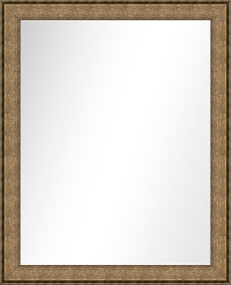 PTM Images Vanity Wall Mirror; Dark Champagne