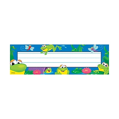 Desk Toppers® pre-kindergarten - 3rd Grades Name Plate, Frog Pond