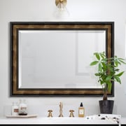 Melissa Van Hise 3.625'' Gold Rope Scoop Resin Frame Wall Mirror; 47'' H x 37'' W x 2'' D