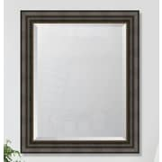 Melissa Van Hise 3.375'' Textured Brown w/ Silver Lip Resin Frame Wall Mirror