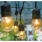Hi-Line Gift Ltd. Vintage Commercial Patio 12 Light Outdoor Hanging Sockets