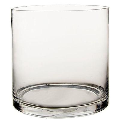 CYSExcel Cylinder Vase (Set of 6); 6'' H x 6'' W x 6'' D WYF078278908890