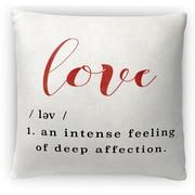 Kavka Definition of Love Micro Fiber Fleece Throw Pillow; 16'' H x 16'' W