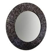 DecorShore Wall Mirror; Black/Silver