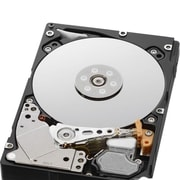 "HGST Ultrastar C10K1800 Series 2.5"" Internal Hard Drive, 1.8TB (0B29921)"