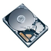 Seagate® Cheetah 10K.7 Ultra320 SCSI Internal Hard Drive, 74GB, Black/Gray (ST373207LW)
