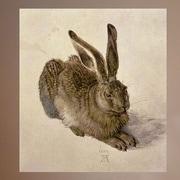 Wallhogs Durer ''Hare'' (1502) Glossy Poster; 48'' H x 43'' W