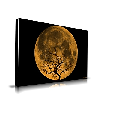 Maxwell Dickson Orange Moon Graphic Art on Wrapped Canvas; 18'' H x 24'' W