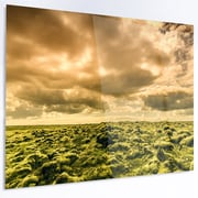 DesignArt 'Beautiful View of Sky and Moss' Photographic Print on Metal