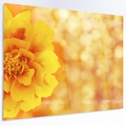 DesignArt 'Beautiful Floral Yellow Background' Photographic Print on Metal