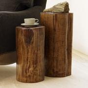 VivaTerra Fallen 2 Piece Wood End Table