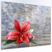 DesignArt 'Beautiful Fallen Red Lily Flower' Photographic Print on Metal