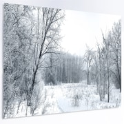 DesignArt 'Beautiful Winter Panorama' Photographic Print on Metal; 12'' H x 28'' W x 1'' D