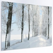 DesignArt 'Beautiful Winter Forest Lane Photo' Photographic Print on Metal; 12'' H x 28'' W x 1'' D