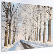 DesignArt 'Beautiful Winter Lane at Morning' Photographic Print on Metal; 12'' H x 28'' W x 1'' D