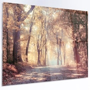 DesignArt 'Golden Autumn Beautiful Forest' Photographic Print on Metal; 12'' H x 28'' W x 1'' D